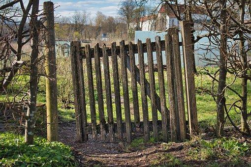 Gate, Wood, Backyard, Old, Weathered, Door, Garden Door