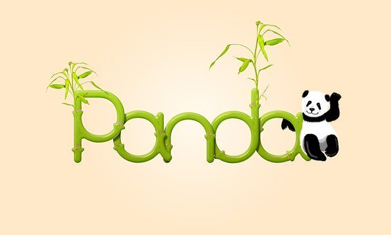 Panda, Bamboo, Leaves, Nature, Word, Text, Logo