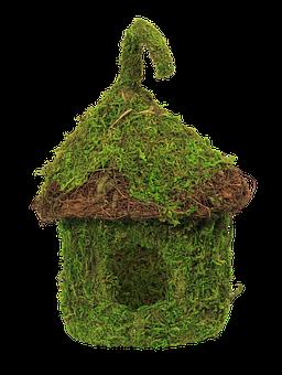 Green House, Bird House, Grass, Birdhouse, Nature