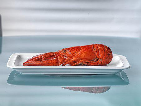Lobster, Food, Delicious, Kitchen, Seafood, Gourmet
