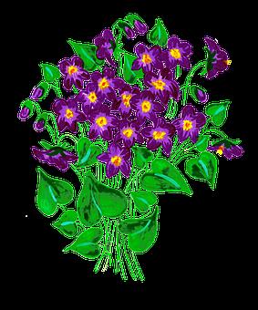 Violets, Flowers, Plant, Leaves, Pansy, Purple Flowers