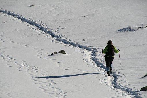 Ski Poles, Snow, Woman, Slopes, Ski Slopes