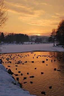 Lake, Ducks, Birds, Sunset, Beautiful, Orange, Snow