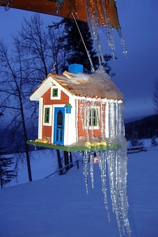 Ice, Cold, Winter, Ice Cycles, Snow, Nature, Bird House
