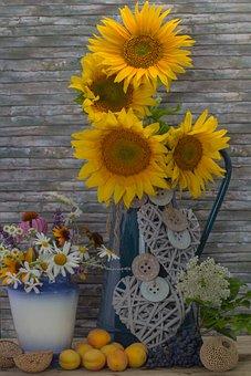 Still Life, Sunflower, Flowers, Apricots, Deco, Yellow