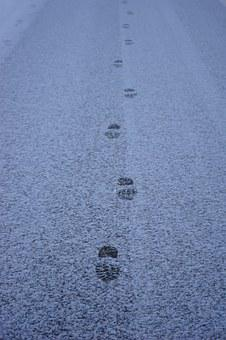Traces, Snow, Road, Away, Entlange The Way, Footprints