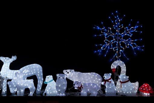 Animals, Bear, Christmas, Deer, Display, Led, Light