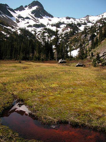 Olympic National Park, Washington, Landscape, Mountains