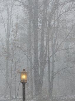 Post, Light, Lamp, Outside, Street Lamp, Trees, Nature