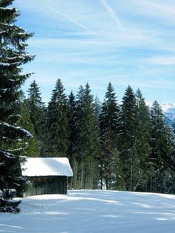 Snow, Winter, Riezlern, Firs, Hut, Sky, Blue, Wintry