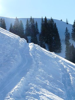 Traces, Snow, Snowy, Skiing, Wag, Track, Winter, Cold
