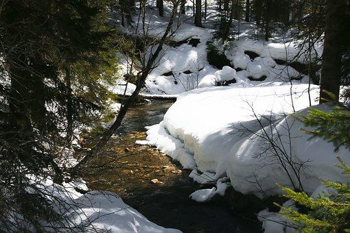 Winter, Snow, Wintry, Nature, Winter Dream