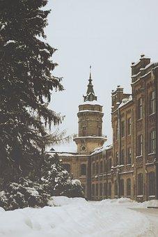 Winter, Snow, Trees, Frost, Kpi, Beautiful Building