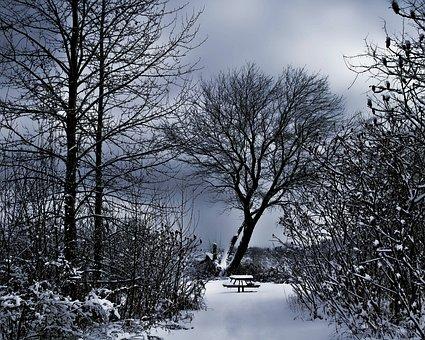 Winter Scenery, Snowy Bench, Dark Sky