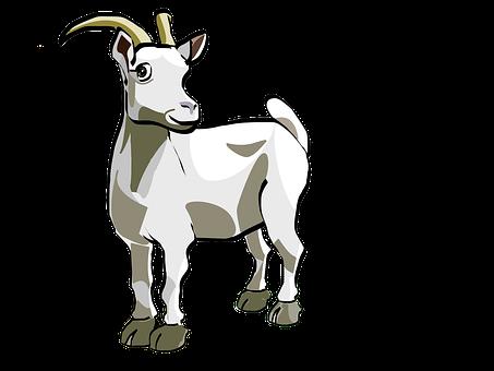 Goat, Animal, Livestock, Farm Animal, Mammal, Horns