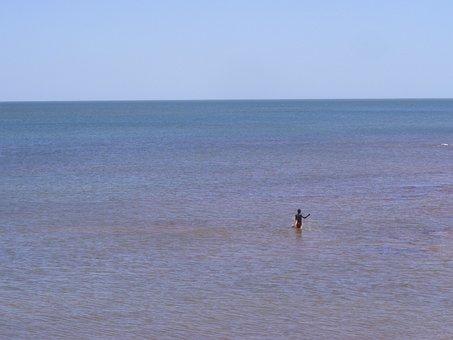 Sea, Man, Fishing, Fisherman, Work, Ocean, Water