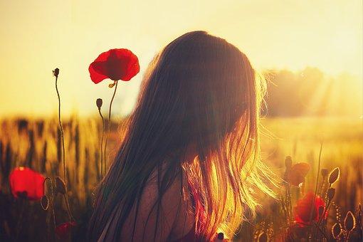 Woman, Poppies, Sunlight, Girl, Flowers, Field, Spring