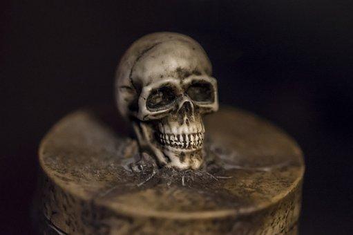 Skull, Death, Teeth, Scary, Horror Movie, Fear