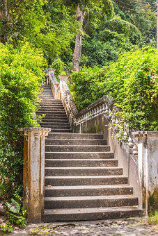 Stairs, Steps, Trees, Outdoors, Nature, Stairway