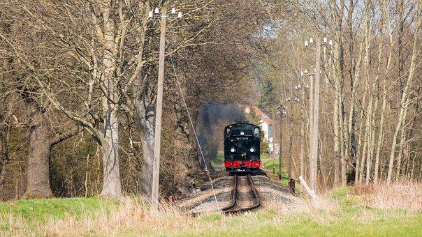 Train, Railroad, Meadow, Forest, Steam Locomotive