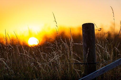 Sunlight, Sunset, Dusk, Calm, Red Sky, Silhouette
