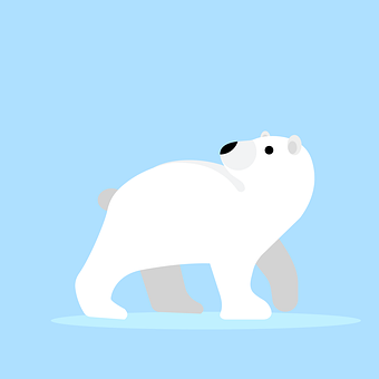 Bear, White, Animal, Teddy, Cute, Cartoon, Nature