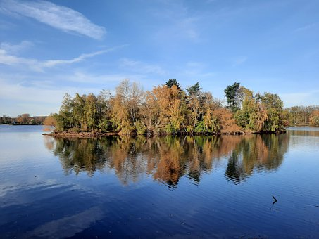 Lake, Trees, Woods, Woodlands, Forest, Water, Autumn
