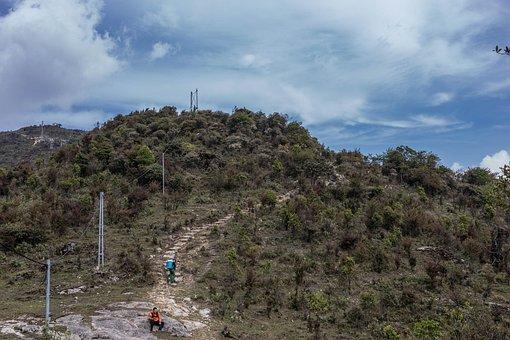 Mountain, Path, Trekking, Hiking, Trail, Travel, Trees