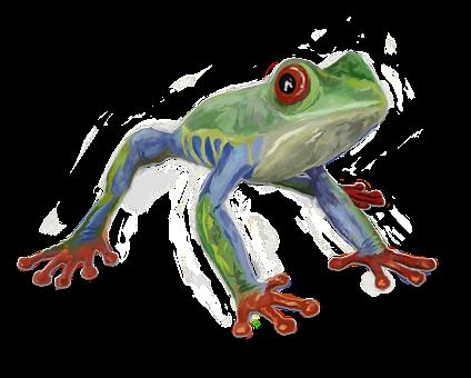 Frog, Animal, Watercolor, Treefrog, Reptile, Exotic