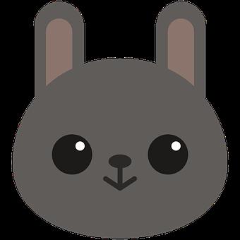 Bunny, Rabbit, Face, Baby Rabbit, Baby Animal, Animal