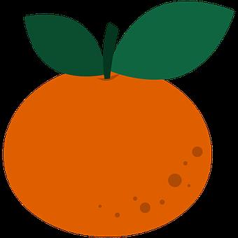 Mandarin, Fruit, Food, Orange, Clementine, Tangerine