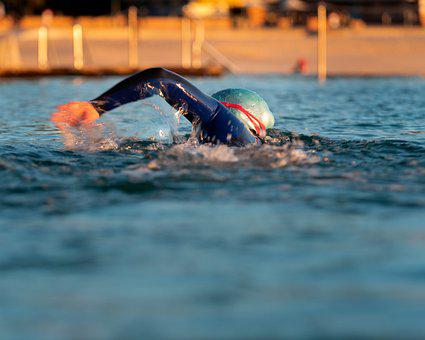 Swim, Exercise, Swimming, Pool, Swimmer, Sport, Water