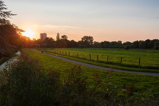 Pasture, Grass, Field, Road, Farmland, Fence, Meadow