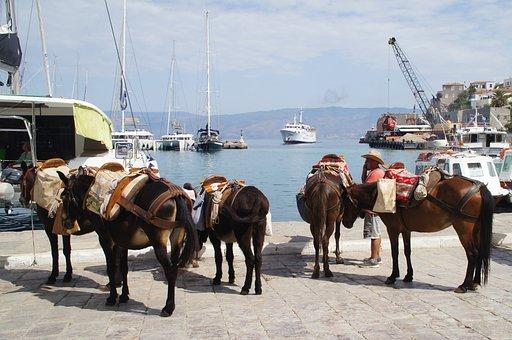 Hydra, Port, Greece, Donkeys, Boats, Ship, Pier