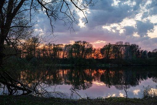 Sunset, Lake, Trees, Forest, Woods, Woodlands, Dusk