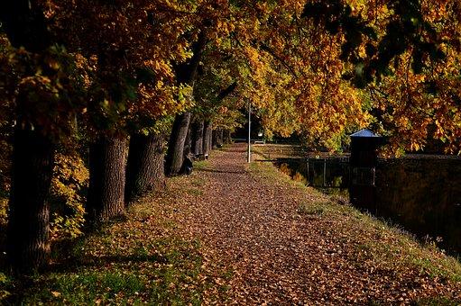Bohemia, Autumn, Záskalská