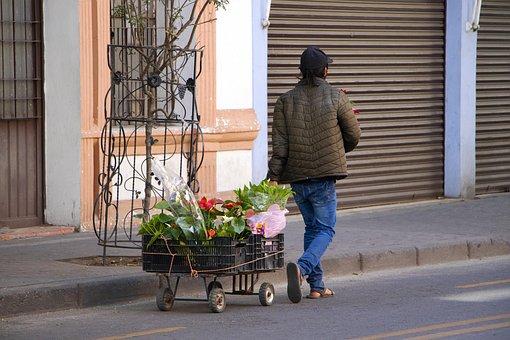 Flowers, Seller, Sale, Street, Help, Need