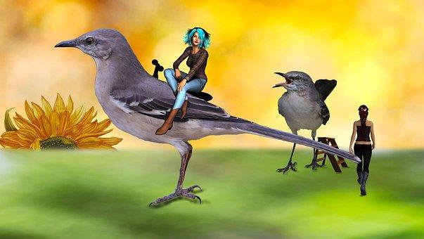 Science Fiction, Humor, Macro World, Birds
