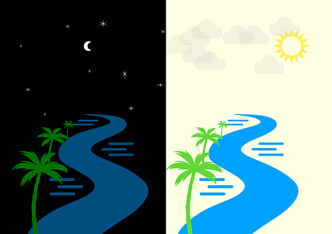 Day, Night, River, Stream, Nature, Palm Trees, Sun