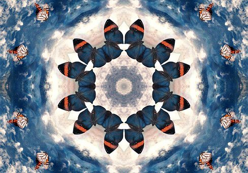 Butterfly, Kaleidoscope, Wings, Design, Mandala