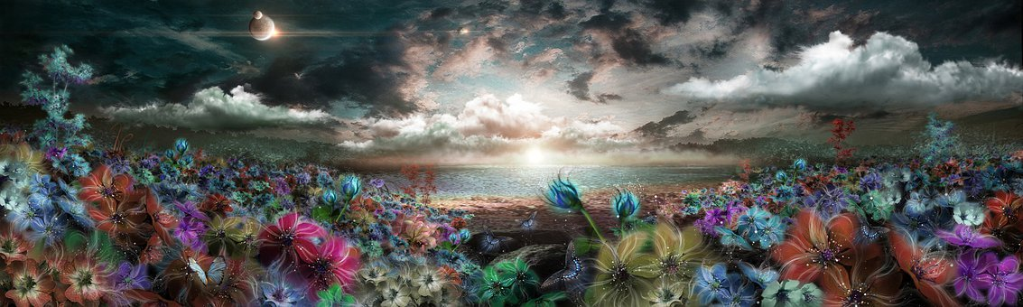 Flowers, Butterflies, Field, Land, Planet, Fantasy