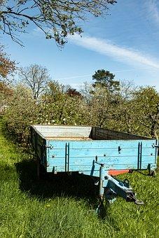 Spring, Earrings, Landscape, Nature, Orchard, Region