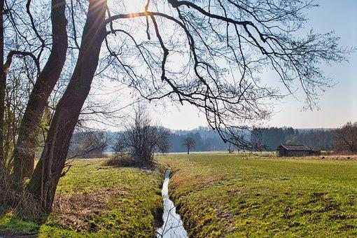 Trees, Shrubs, Log Cabin, Meadow, Pasture, Barn