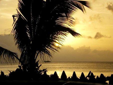 Hawaii, Sunset, Silhouette, Tropical, Summer, Ocean