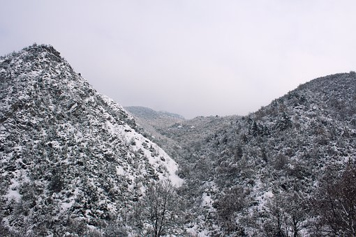Mountains, Trees, Snow, Frost, Ice, Forest, Adventure