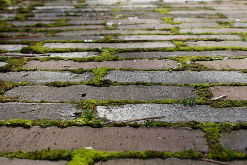 Street, Paving, Stone, Pavers, Road, Walking Path, Old