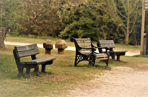 Benches, Seats, Park, Trees, Wood, Rest, Sit, Forest