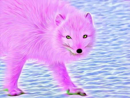 Wolf, Abstract, Animal, Wildlife, Colorful, Design
