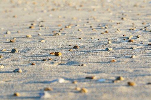 Beach, Sand, Rocks, Coast, White Sand, Seashore