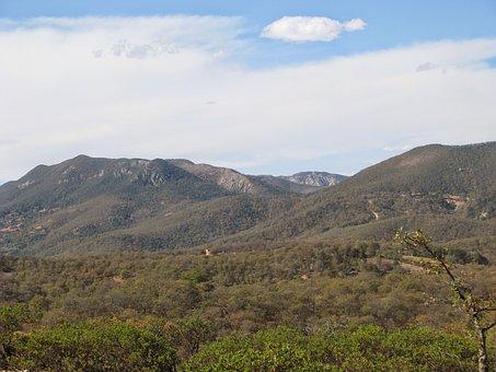 The Shoal, Mexico, Mexican Countryside